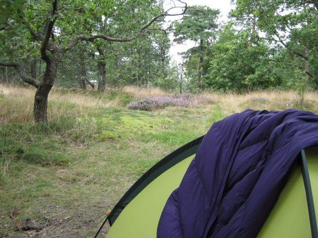 シュラフをテントにかけて干している写真