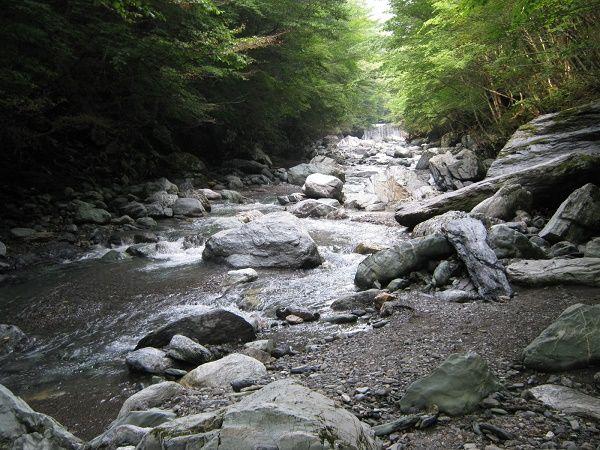 きれいな渓谷沿いの沢