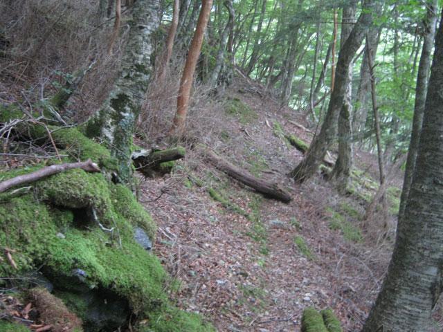 丸石小屋までの登山道