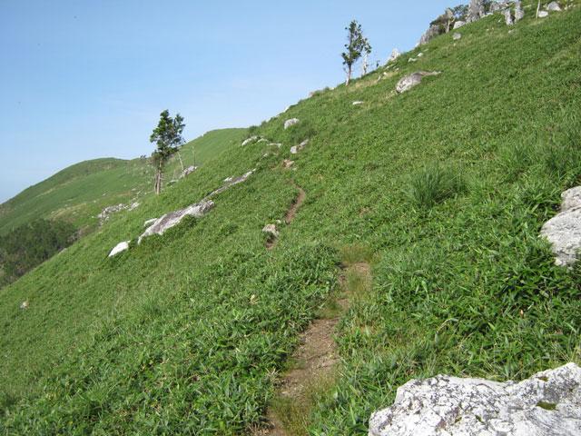 草原の登山道