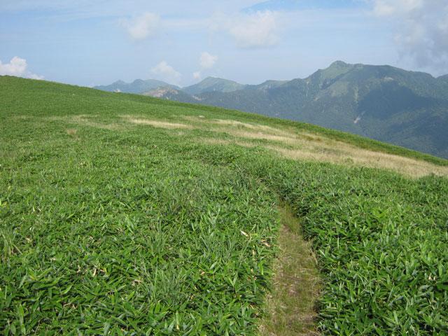 三嶺への稜線の登山道